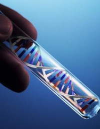 dna - human genome project